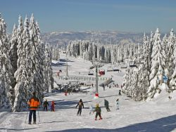 Kopaonik Accommodation